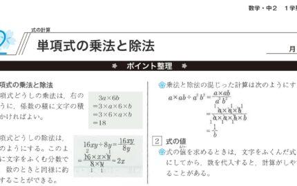 中2数学単項式の乗法と除法のポイント整理