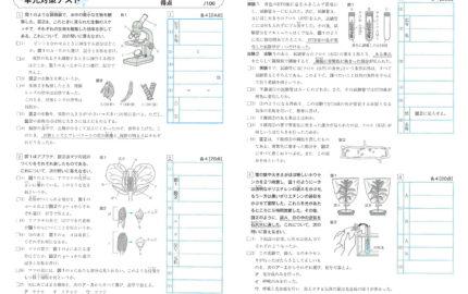 中1_1学期実力テスト_理科