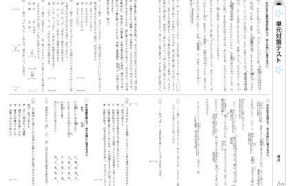 中2_2学期実力テスト_国語