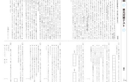 中2_3学期実力テスト_国語