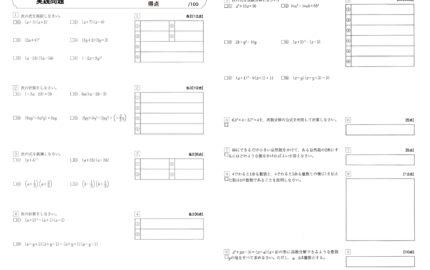 数学実践問題